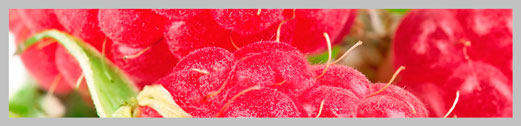raspeberry